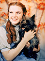 Judy Garland as Dorothy with her dog Toto