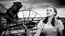 Judy Garland and Toto before the twister