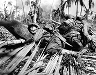 South Pacific War